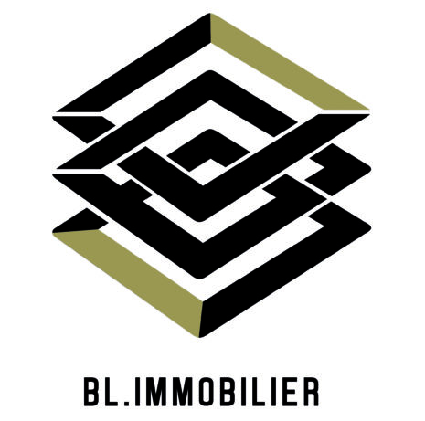 LOGO_Promotion immobilière_BL.Immobilier